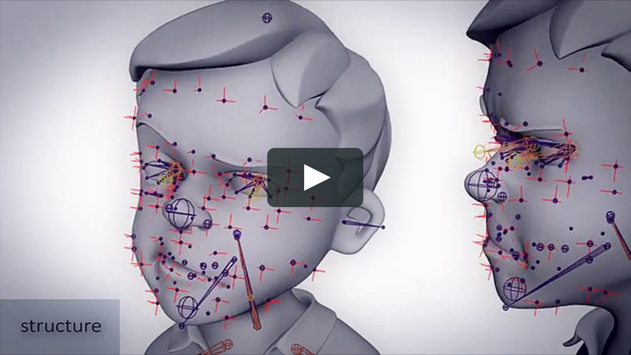 Facial animation rigging